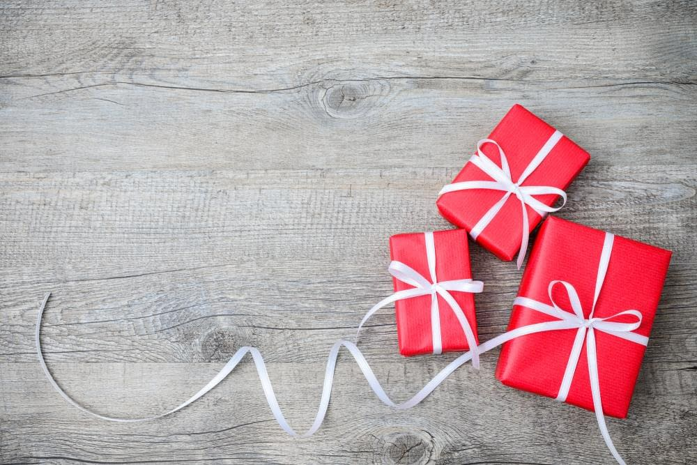 2020 Travel Holidy Gift Guide
